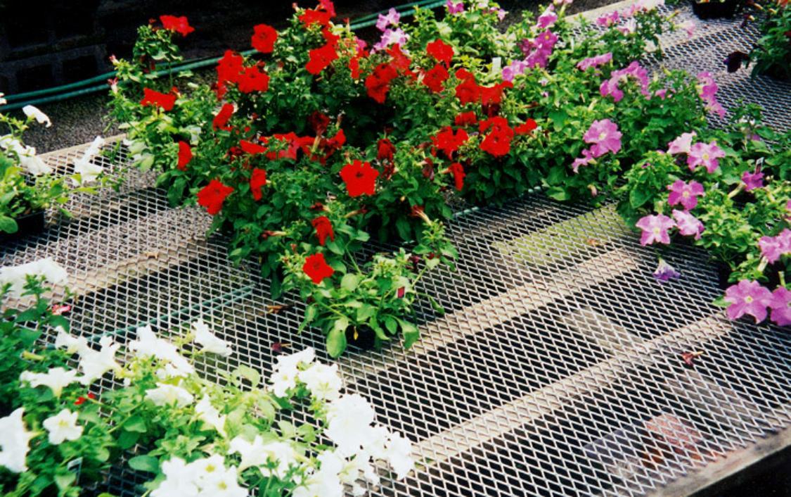 Giàn hoa bằng lưới kéo dãn